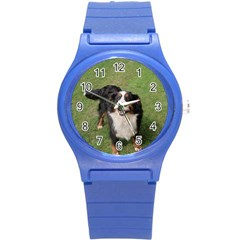Bernese Mountain Dog Full Round Plastic Sport Watch (S) by TailWags