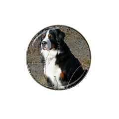 Bernese Mountain Dog Sitting Hat Clip Ball Marker (10 pack) by TailWags