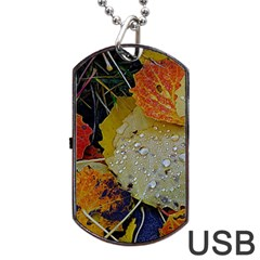 Autumn Rain Yellow Leaves Dog Tag Usb Flash (two Sides) by Onesevenart