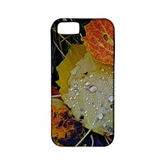 Autumn Rain Yellow Leaves Apple Iphone 5 Classic Hardshell Case (pc+silicone) by Onesevenart