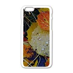 Autumn Rain Yellow Leaves Apple Iphone 6/6s White Enamel Case by Onesevenart