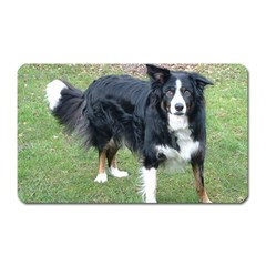 Border Collie Black Tri Full Magnet (Rectangular) by TailWags