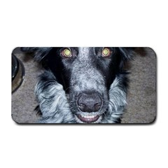 Border Collie 2 Medium Bar Mats by TailWags