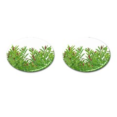 Tropical Floral Print Cufflinks (oval) by dflcprints