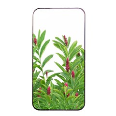 Tropical Floral Print Apple Iphone 4/4s Seamless Case (black) by dflcprints