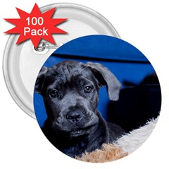 Cane Corso Pup 3  Buttons (100 Pack)  by TailWags