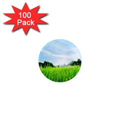 Green Landscape Green Grass Close Up Blue Sky And White Clouds 1  Mini Magnets (100 Pack)  by Onesevenart