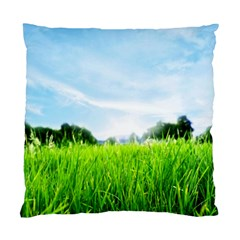 Green Landscape Green Grass Close Up Blue Sky And White Clouds Standard Cushion Case (one Side) by Onesevenart