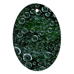 Morning Dew Ornament (Oval) by Onesevenart