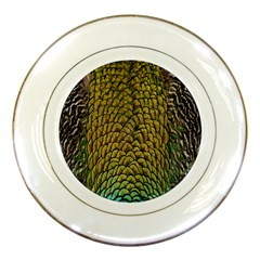 Peacock Bird Feather Color Porcelain Plates by AnjaniArt