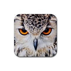 Owl Face Rubber Square Coaster (4 Pack)  by Onesevenart