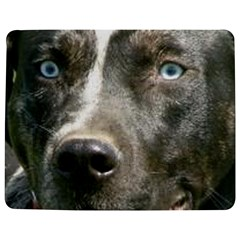 Blue Merle Catahoula Jigsaw Puzzle Photo Stand (rectangular) by TailWags