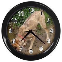 Tan Merle  Catahoula Wall Clocks (Black) by TailWags