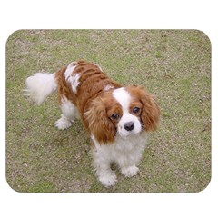 Cavalier King Charles Spaniel Blenheim Full Double Sided Flano Blanket (Medium)  by TailWags
