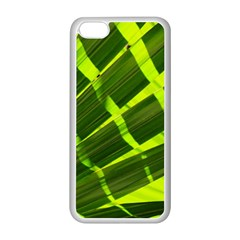 Frond Leaves Tropical Nature Plant Apple Iphone 5c Seamless Case (white) by Amaryn4rt