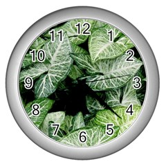 Green Leaves Nature Pattern Plant Wall Clocks (silver)  by Amaryn4rt