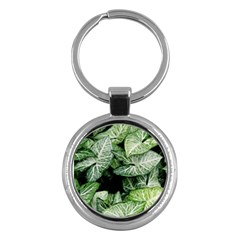 Green Leaves Nature Pattern Plant Key Chains (round)  by Amaryn4rt