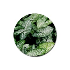 Green Leaves Nature Pattern Plant Rubber Round Coaster (4 Pack)