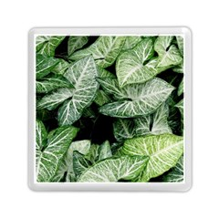 Green Leaves Nature Pattern Plant Memory Card Reader (square)  by Amaryn4rt