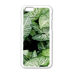 Green Leaves Nature Pattern Plant Apple Iphone 6/6s White Enamel Case by Amaryn4rt