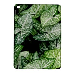 Green Leaves Nature Pattern Plant Ipad Air 2 Hardshell Cases by Amaryn4rt