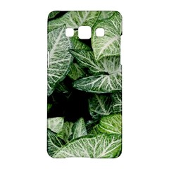 Green Leaves Nature Pattern Plant Samsung Galaxy A5 Hardshell Case  by Amaryn4rt