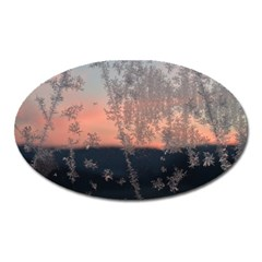 Hardest Frost Winter Cold Frozen Oval Magnet by Amaryn4rt