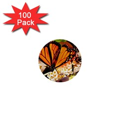 Monarch Butterfly Nature Orange 1  Mini Buttons (100 Pack)