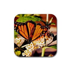 Monarch Butterfly Nature Orange Rubber Square Coaster (4 Pack)  by Amaryn4rt