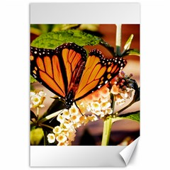 Monarch Butterfly Nature Orange Canvas 24  x 36  by Amaryn4rt