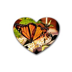 Monarch Butterfly Nature Orange Heart Coaster (4 Pack)