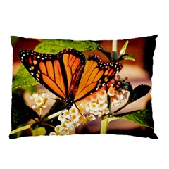 Monarch Butterfly Nature Orange Pillow Case (two Sides) by Amaryn4rt