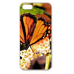 Monarch Butterfly Nature Orange Apple Seamless Iphone 5 Case (clear) by Amaryn4rt