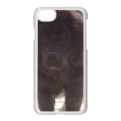 Newfoundland Puppy Muddy Apple iPhone 7 Seamless Case (White) by TailWags
