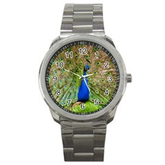 Peacock Animal Photography Beautiful Sport Metal Watch by Amaryn4rt