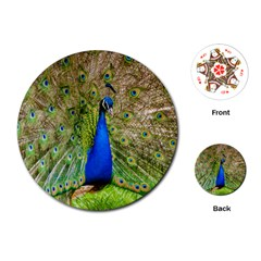 Peacock Animal Photography Beautiful Playing Cards (Round)  by Amaryn4rt