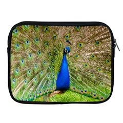 Peacock Animal Photography Beautiful Apple Ipad 2/3/4 Zipper Cases by Amaryn4rt