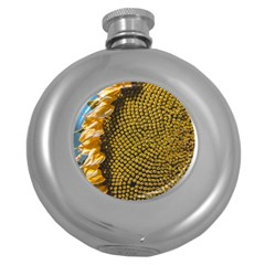 Sunflower Bright Close Up Color Disk Florets Round Hip Flask (5 Oz) by Amaryn4rt