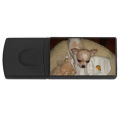 Chihuahua Puppy USB Flash Drive Rectangular (1 GB) by TailWags