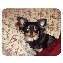 Long Haired Chihuahua In Bed Double Sided Flano Blanket (Medium)  by TailWags