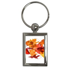 Autumn Leaves Leaf Transparent Key Chains (rectangle)  by Amaryn4rt