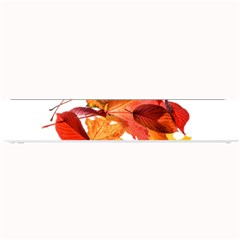 Autumn Leaves Leaf Transparent Small Bar Mats by Amaryn4rt