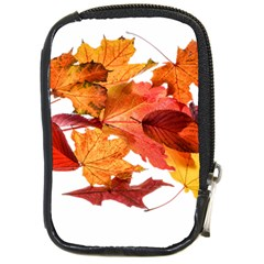 Autumn Leaves Leaf Transparent Compact Camera Cases by Amaryn4rt