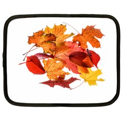 Autumn Leaves Leaf Transparent Netbook Case (xl)  by Amaryn4rt