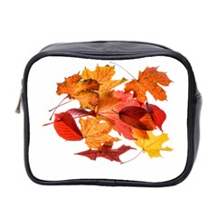 Autumn Leaves Leaf Transparent Mini Toiletries Bag 2 Side by Amaryn4rt