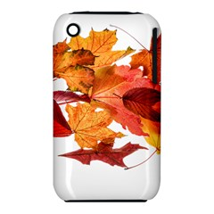 Autumn Leaves Leaf Transparent Iphone 3s/3gs by Amaryn4rt