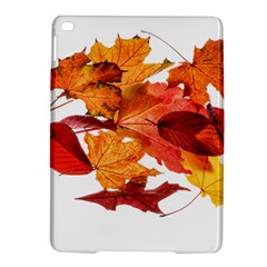 Autumn Leaves Leaf Transparent Ipad Air 2 Hardshell Cases by Amaryn4rt