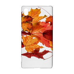 Autumn Leaves Leaf Transparent Sony Xperia Z3+ by Amaryn4rt