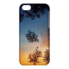 Hardest Frost Winter Cold Frozen Apple Iphone 5c Hardshell Case by Amaryn4rt