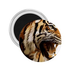 Royal Tiger National Park 2 25  Magnets by Amaryn4rt